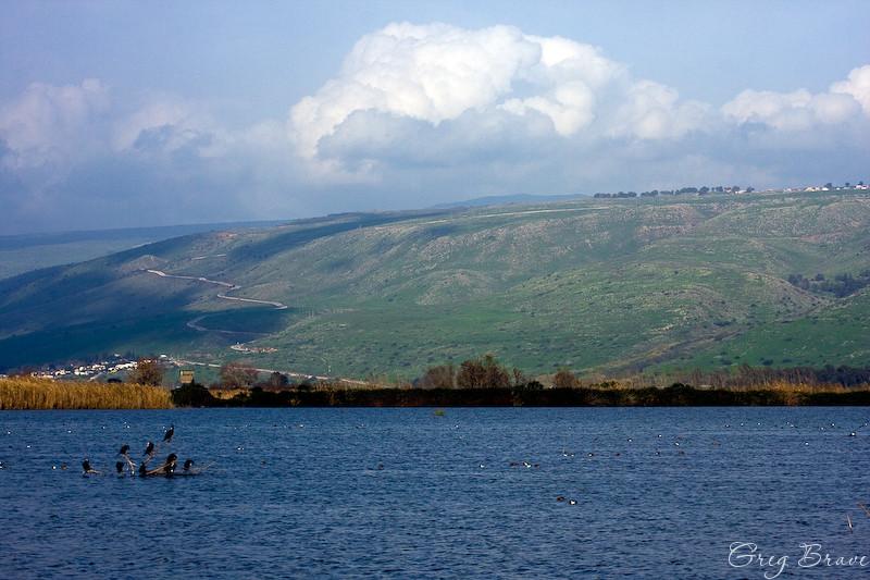 Ahula Reserve