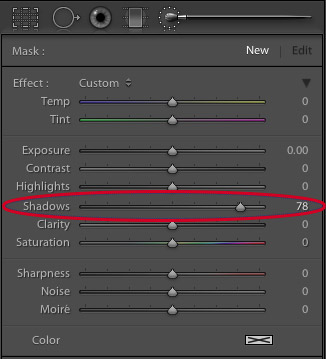 Lightroom adjustment brush tool settings