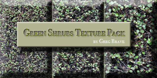 Download Green Shrubs Texture Pack