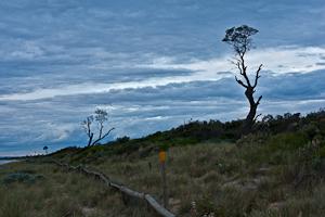 Seaford Beach, Seaford, Victoria. Australia.