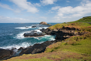 Seal Rocks, The Nobbies, Phillip Island, Victoria, Australia