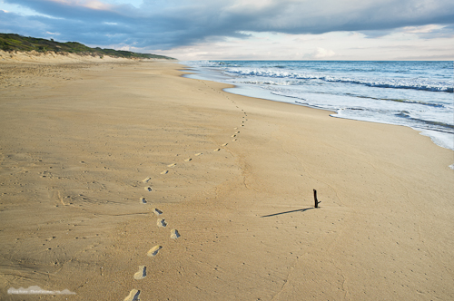Ninety Mile Beach in Victoria on the first morning of 2012
