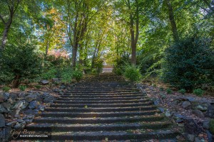 Stairs at Alfred Nicholas Memorial Gardens