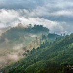 Rice terraces in early morning mist in Kathmandu Valley, Nepal