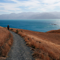 Person walking on a path in Kaikoura, South Island, New Zealand