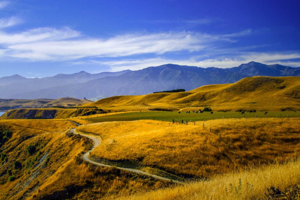 Breathtaking view of Kaikoura, New Zealand
