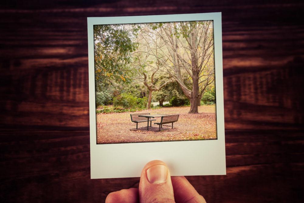 Male hand holding instant photo of autumn scene - empty picnic t