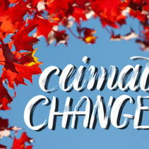 Climate Change brush lettering on blue sky and red maple leafs