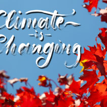 Climate is Changing - cursive brush lettering on blue sky and red maple leafs
