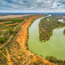 Aerial view of agricultural fields and Murray River flowing into the horizon among gum trees in South Australia