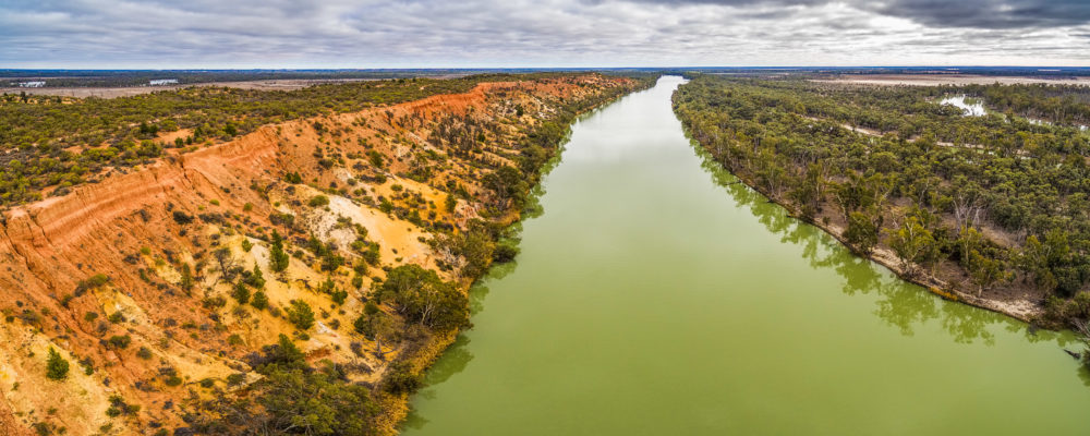 Aerial panorama of eroding vivid orange sandstone cliffs and iconic Murray River in Riverland region of South Australia