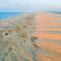 Stockton beach sand dunes at sunrise - aerial view