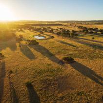 Kangaroo Island rural area at sunset aerial view.