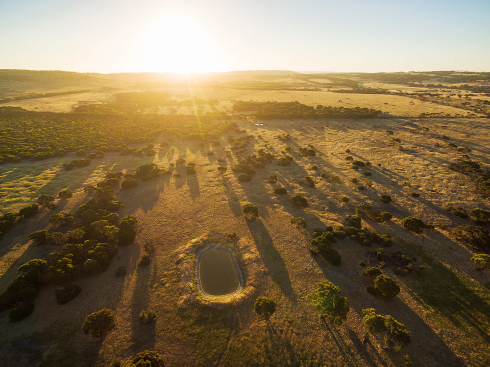 Kangaroo Island pastures and meadows at sunset aerial view.