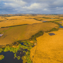 Aerial view of Australian rural scenery - yellow pastures and hills at sunset