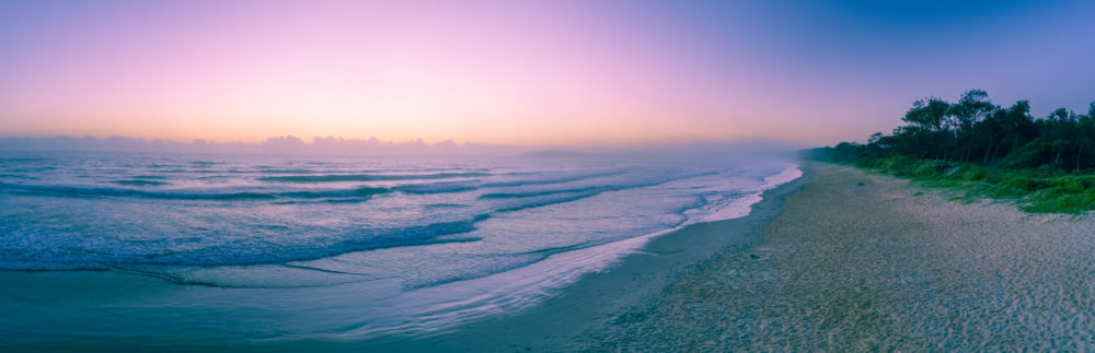 Wide panorama of ocean beach and coastal vegetation at dawn with copy space