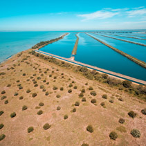 Wastewater treatment plant pools near ocean coastline