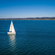 White sailboat navigating Port Phillip Bay near the coastline