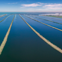 Water treatment plant pool in Melbourne, Australia - panoramic landscape