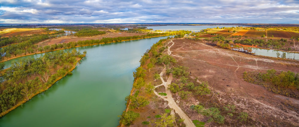 Aerial panorama of Murray River at Kingston on Murray, Riverland, South Australia