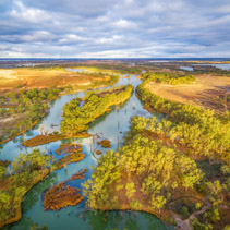 Small section of Murray River among native Australian vegetation at sunset. Riverland, South Australia