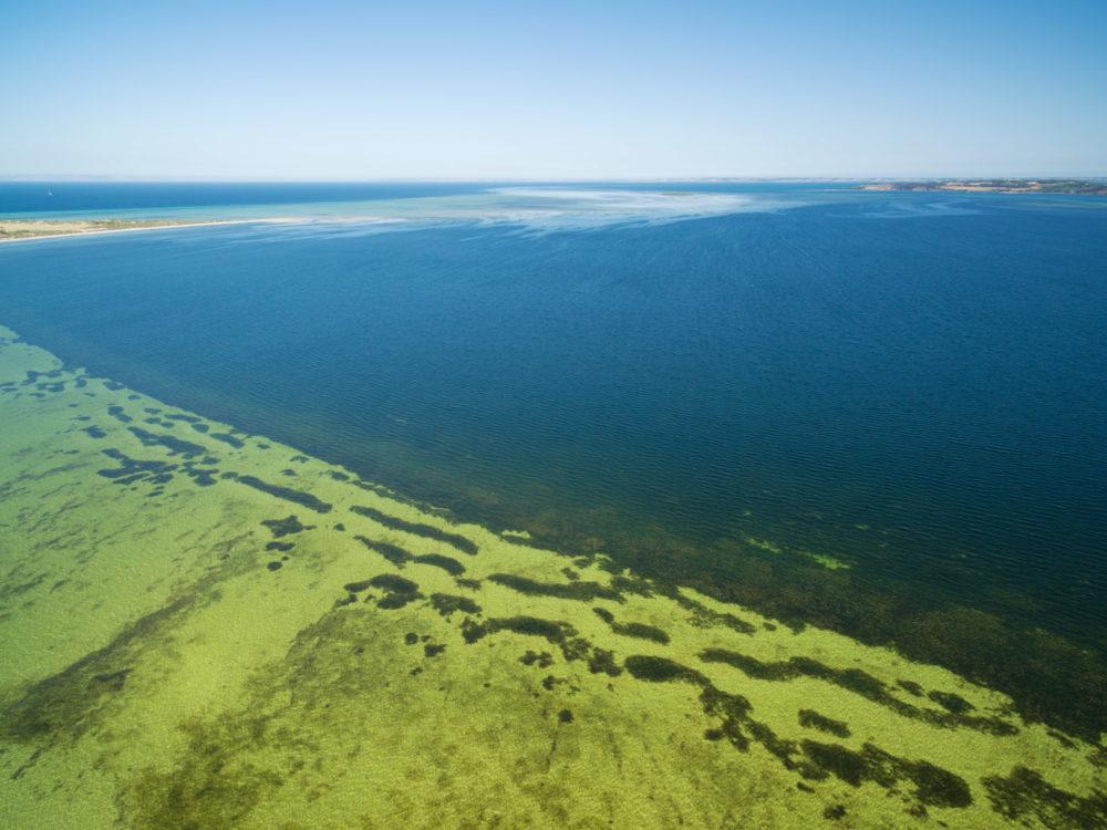 Bay of Shoals aerial view. Shallow turquoise ocean water, Kangar