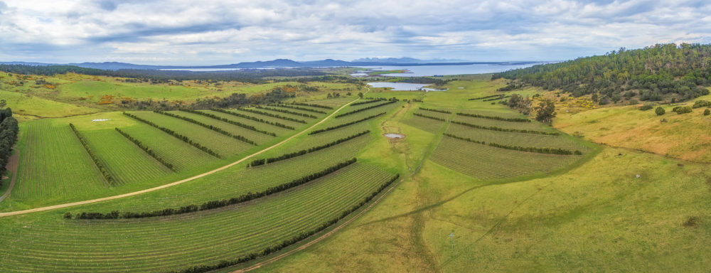 Aerial panorama of Devil's Corner winery. East coast, Apslawn, Tasmania, Australia
