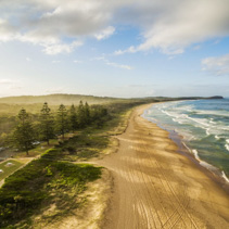 Aerial view of beautiful ocean coastline, sandy beach, and trees casting long shadows at sunset