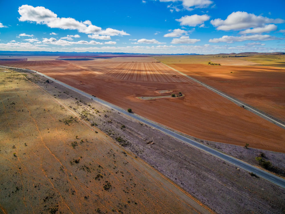 Agriculture in South Australia - aerial landscape