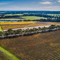 Aerial view of vineyard and surrounding scenic countryside on bright sunny day in Australia