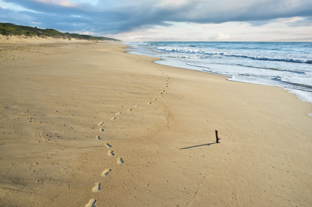 Footprints in the sand on 90 mile beach Australia