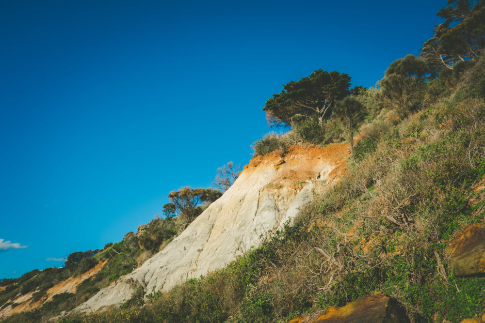 Eroding cliffs and native vegetation on Olivers Hill in Frankston, Victoria, Australia