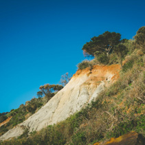 Eroding cliffs and native vegetation on Olivers Hill in Frankston, Victoria, Australia