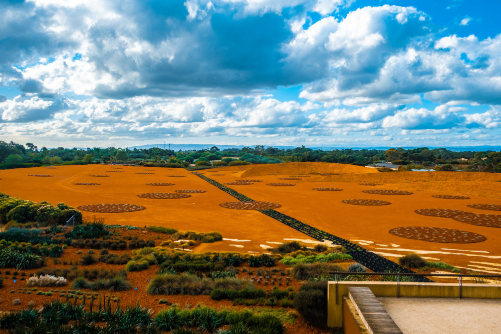 Magnificent view of Arid Garden display on bright sunny day in Cranbourne, Australia