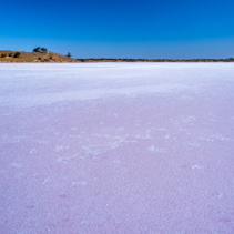 Pink salt lake Crosbie on bright sunny day. Murray-Sunset National Park, Australia