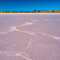 Beautiful salt pattern on pink lake surface in Australian desert