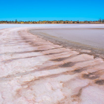Pink salt lake in Australian Desert on bright sunny day