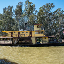 Pride of the Murray paddle steamer sailing