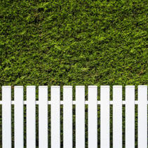 White fence and green hedge background with copy space