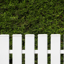 White fence and green hedge closeup background with copy space