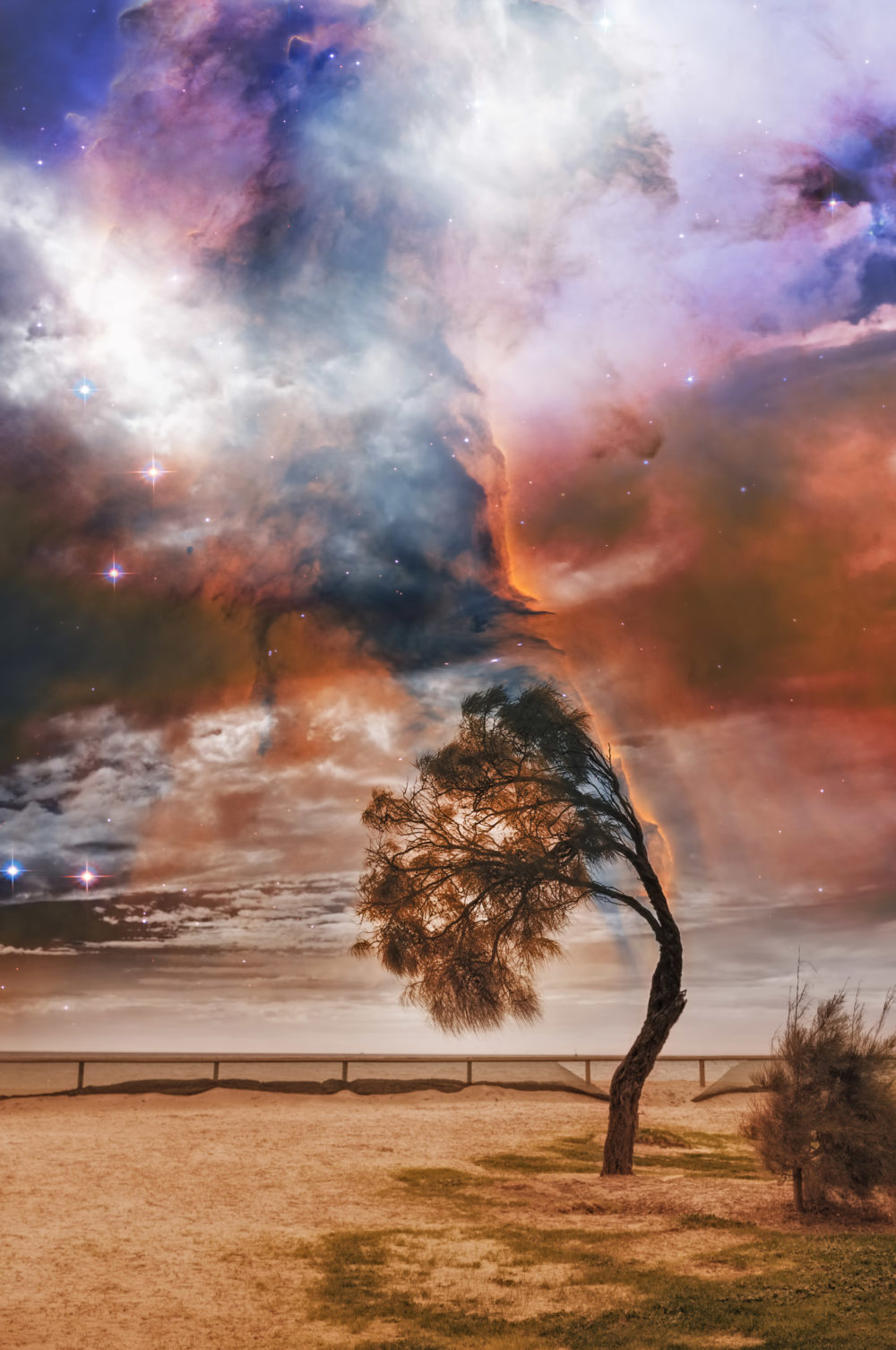 Alien landscape with lone tree bent in strong wind and bright galaxy in the sky.