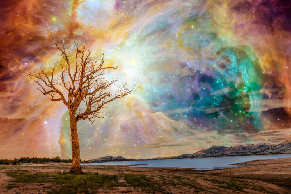 Alien planet fantasy landscape. Tree standing near lake with bright galaxy and stars shining in the sky.