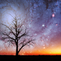 Lonely tree silhouette in alien world with bright galaxy vortex in the sky