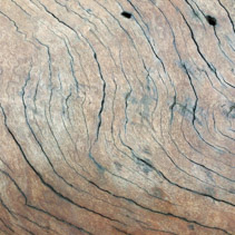 Wooden texture with curved cracks from a driftwood