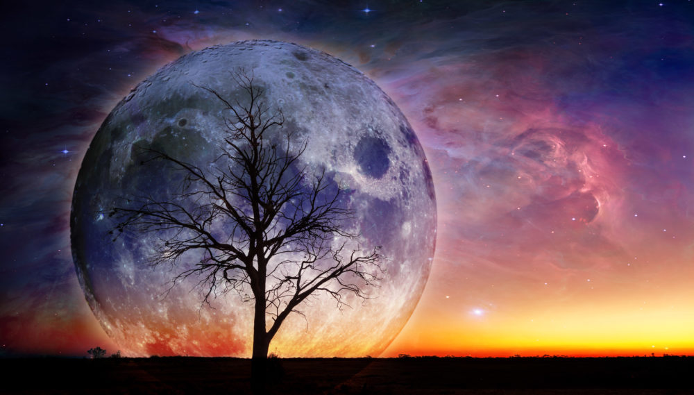 Fantasy landscape - Lonely bare tree silhouette with huge planet rising behind it and galaxy in the sky. Elements of this image are furnished by NASA