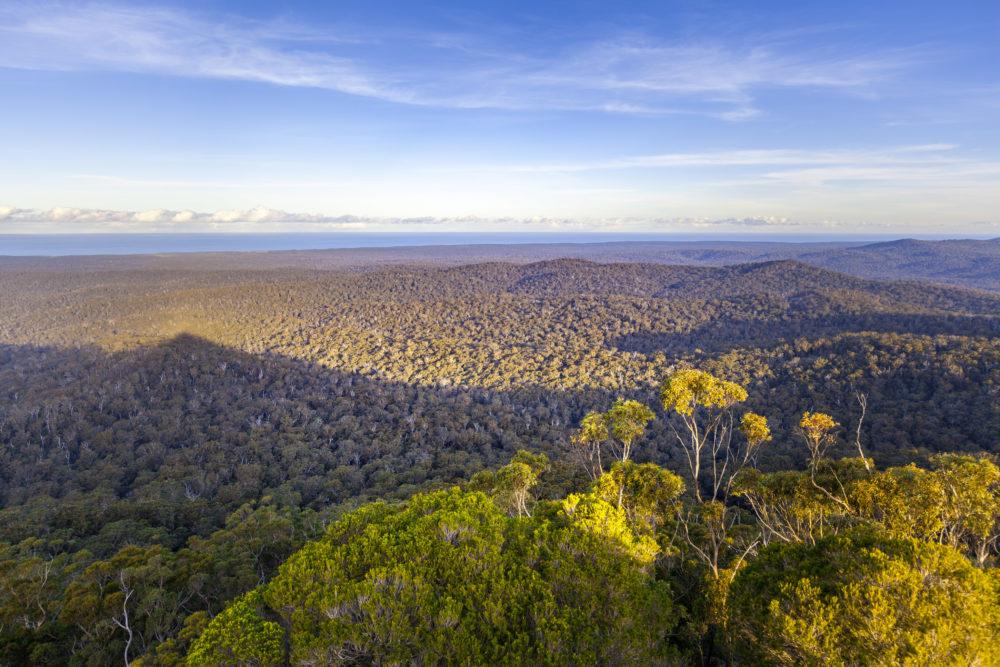 Croajingolong National Park, Victoria, Australia