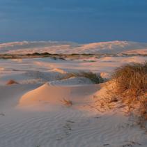 Orange sununet reflecting in white sand dunes. Anna Bay, New South Wales, Australia