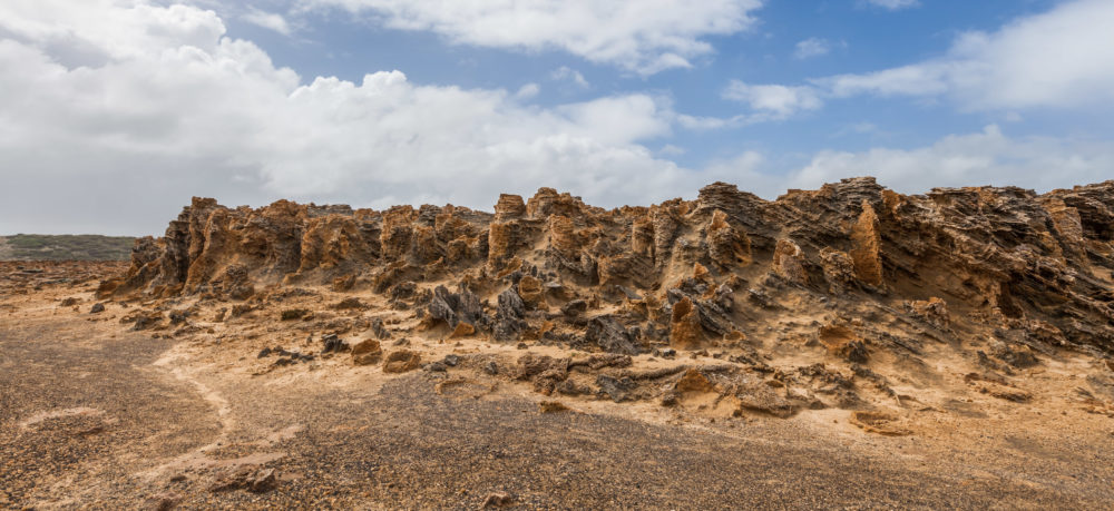 Unusual petrified forest - rock formations in Cape Bridgewater, Victoria, Australia