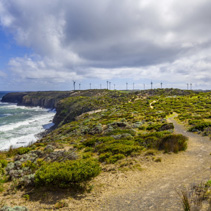 Wind farm built on rugged ocean coastline in Australia