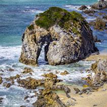 Horse Head rock formation closeup on ocean shore in NSW, Australia
